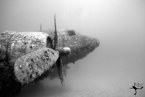 Wreck of a DOUGLAS C-47 &quot;Skytrain&quot; airplane, often known ... by Rico Besserdich 